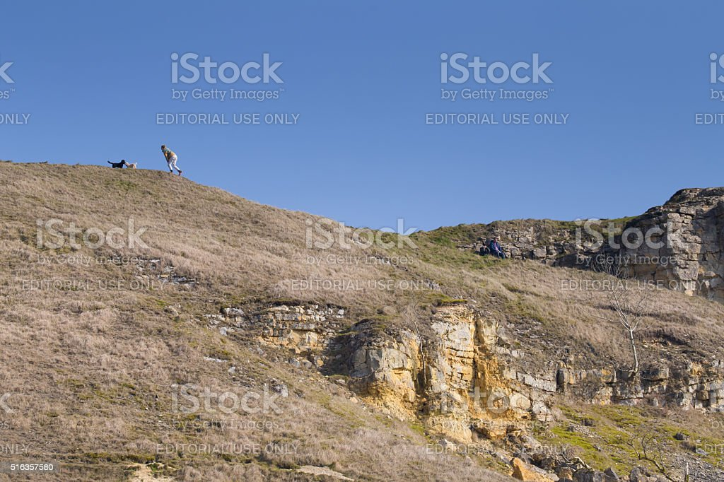 Woman playing with her dogs on Cleeve Hill stock photo