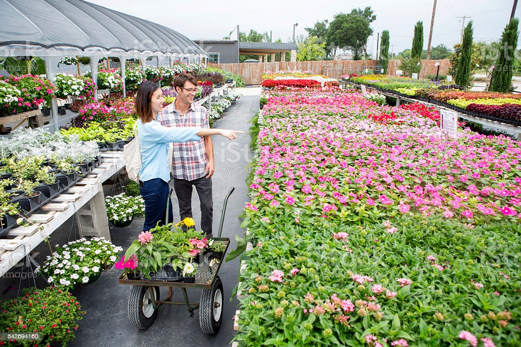 Woman points to flowers in local nursery stock photo
