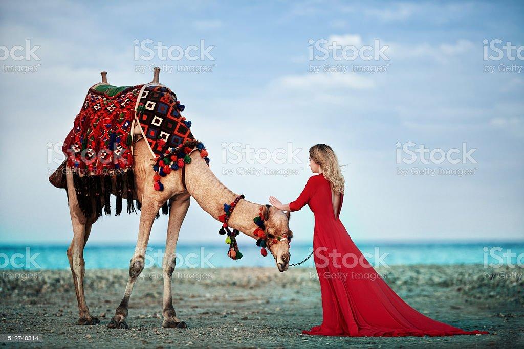 woman posing near camel in Egypt stock photo
