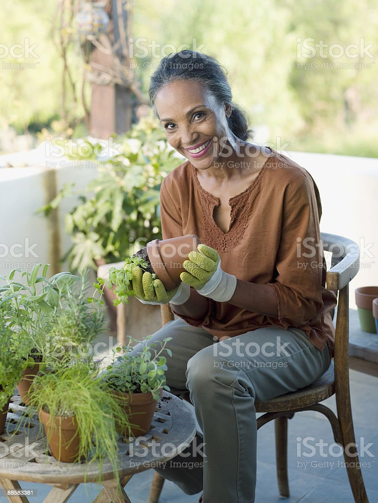 Woman potting plants stock photo