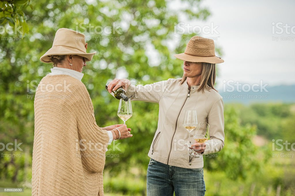 Woman pouring white wine to her friend stock photo