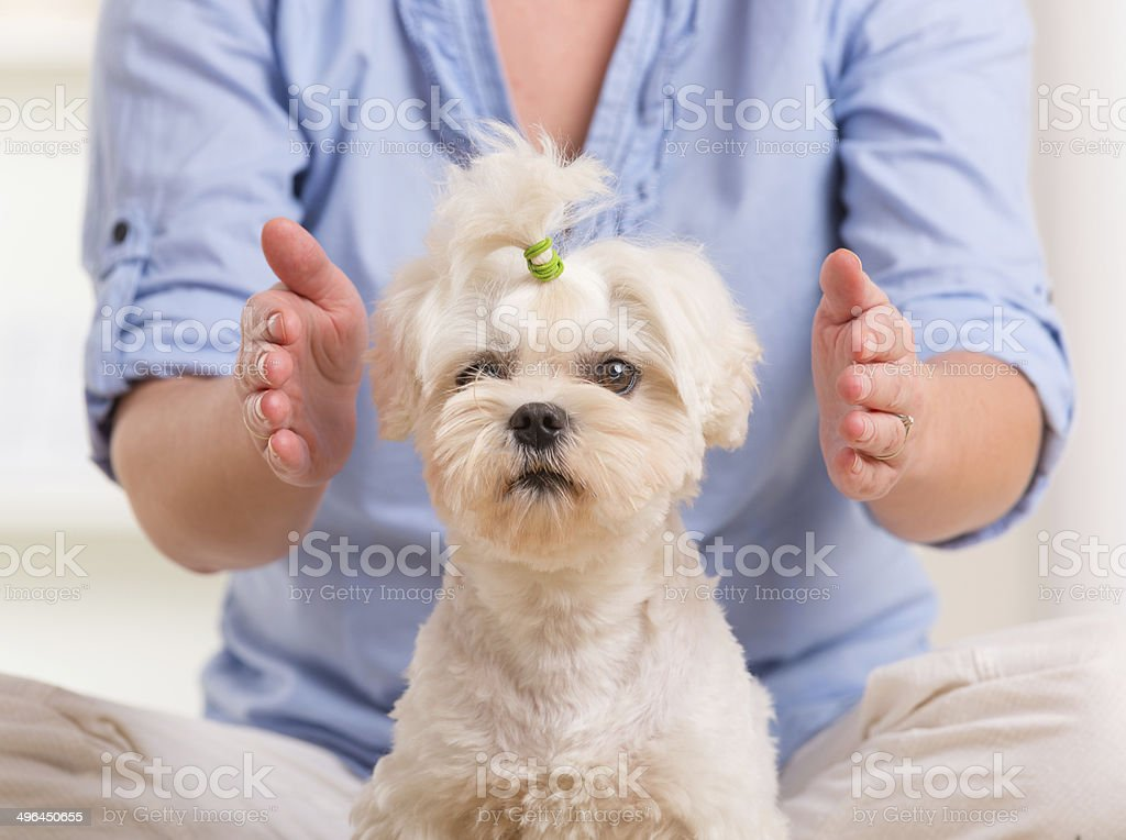 Woman practicing reiki therapy stock photo