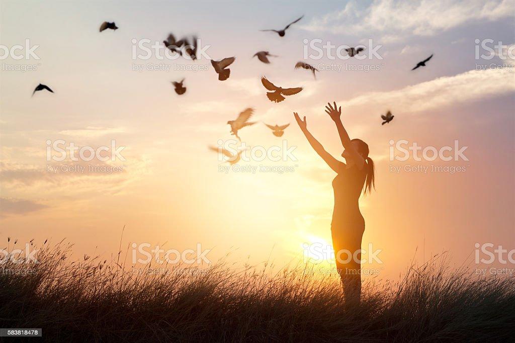 Woman praying and free bird enjoying nature on sunset background stock photo