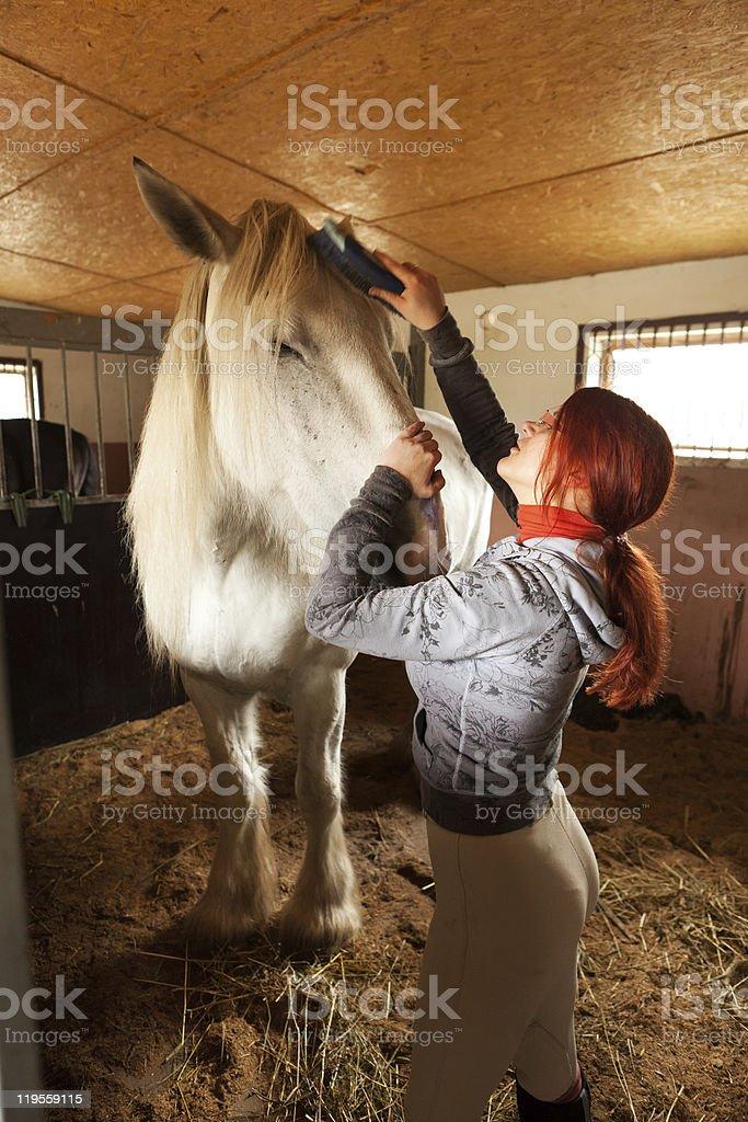 Woman prepare horse for riding stock photo