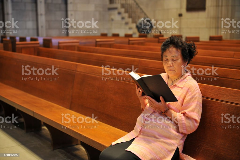 Woman Reading Bible royalty-free stock photo