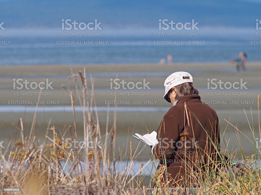 Woman Reading on a Beach in the Summer stock photo