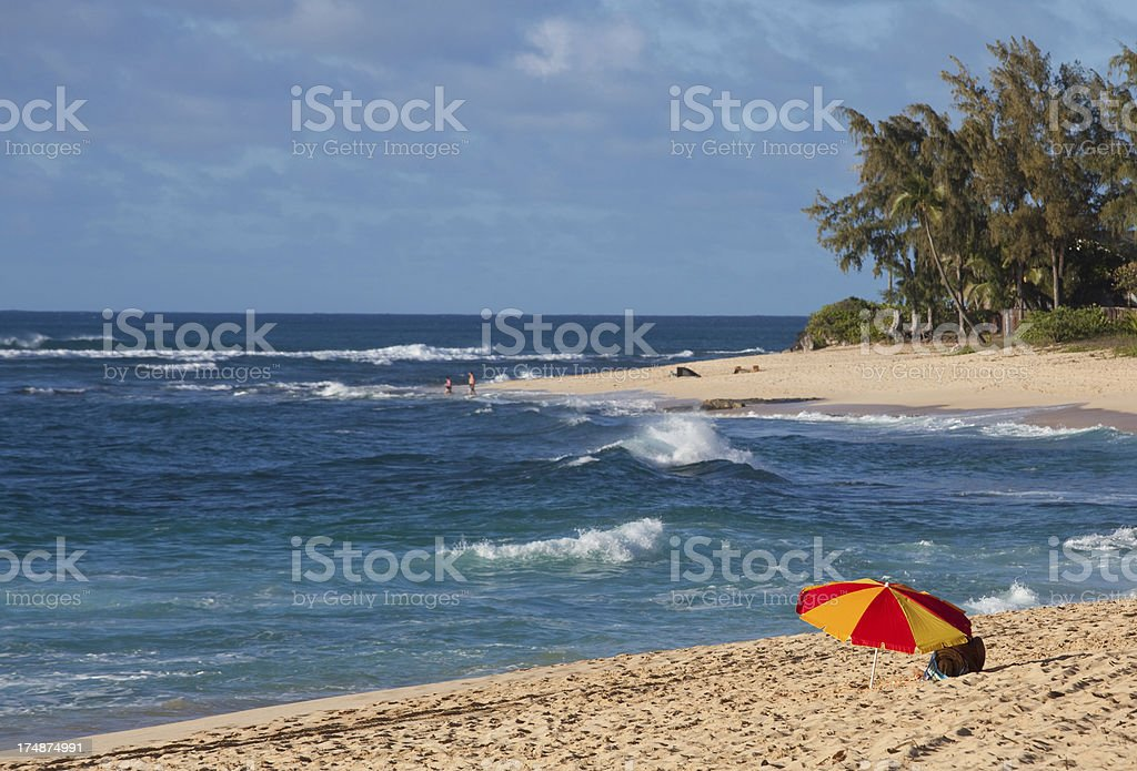 Woman Relaxing at the Beach royalty-free stock photo