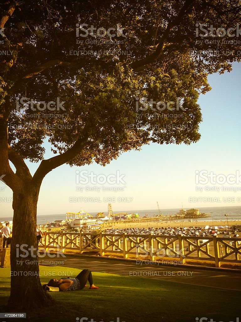 Woman relaxing under tree in Santa Monica royalty-free stock photo