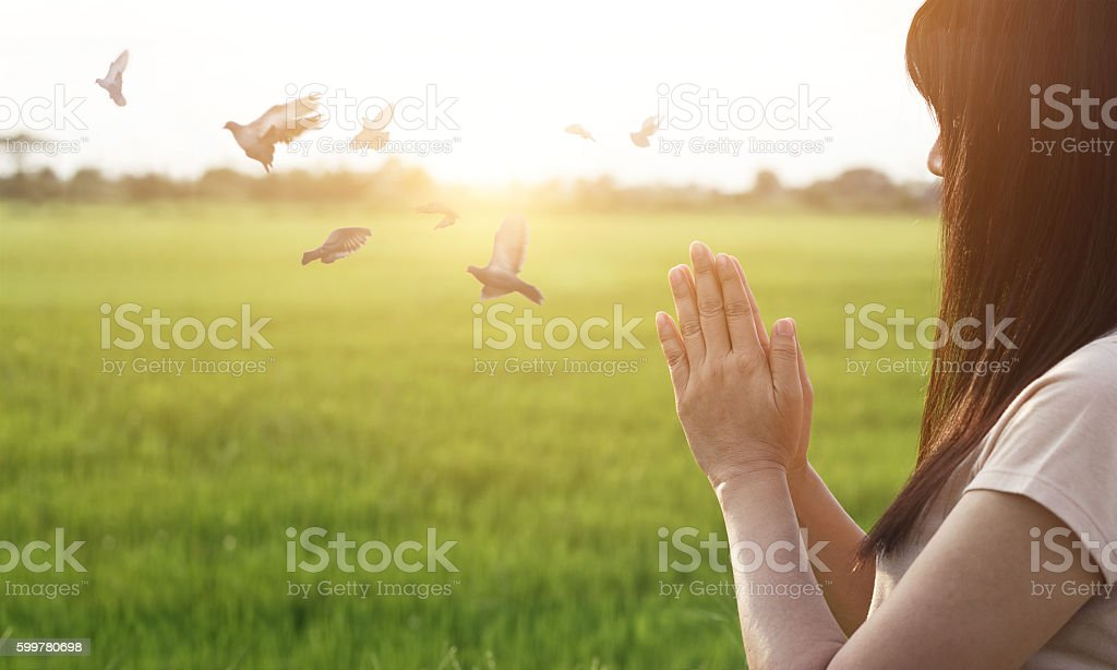 Woman respect and pray on nature background stock photo