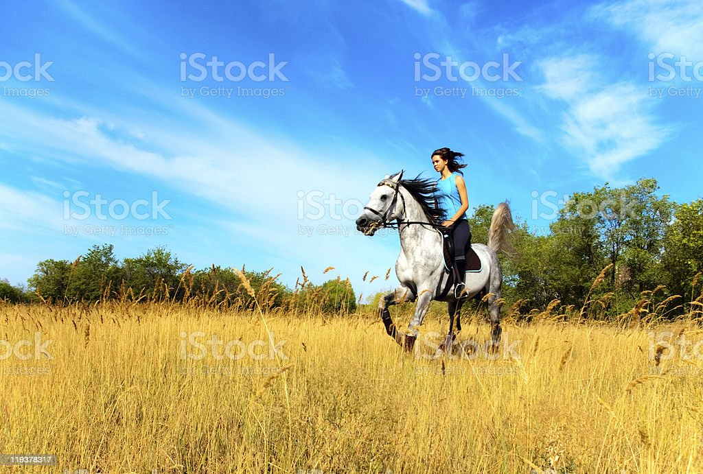 A woman riding a horse in an open field of hay  stock photo