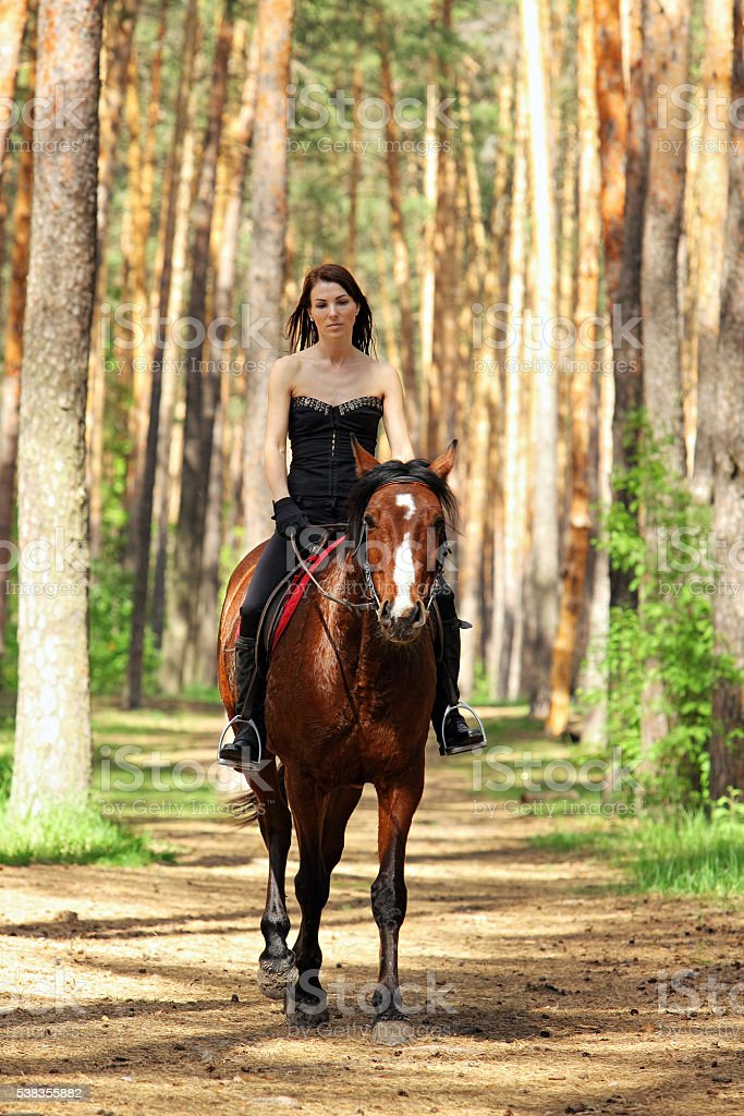 Woman riding a horse in the forest stock photo