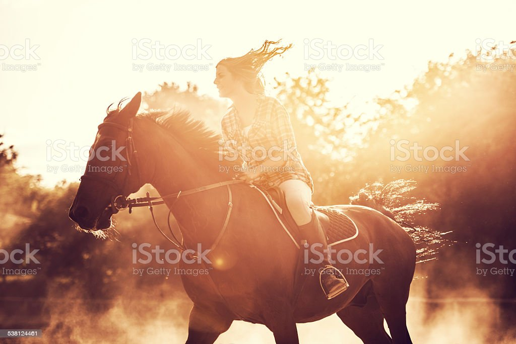 Woman riding a stallion outdoors. stock photo