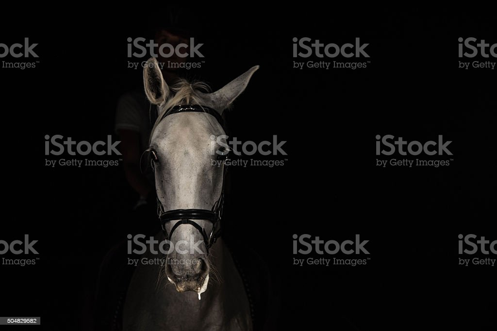 Woman riding horse royalty-free stock photo