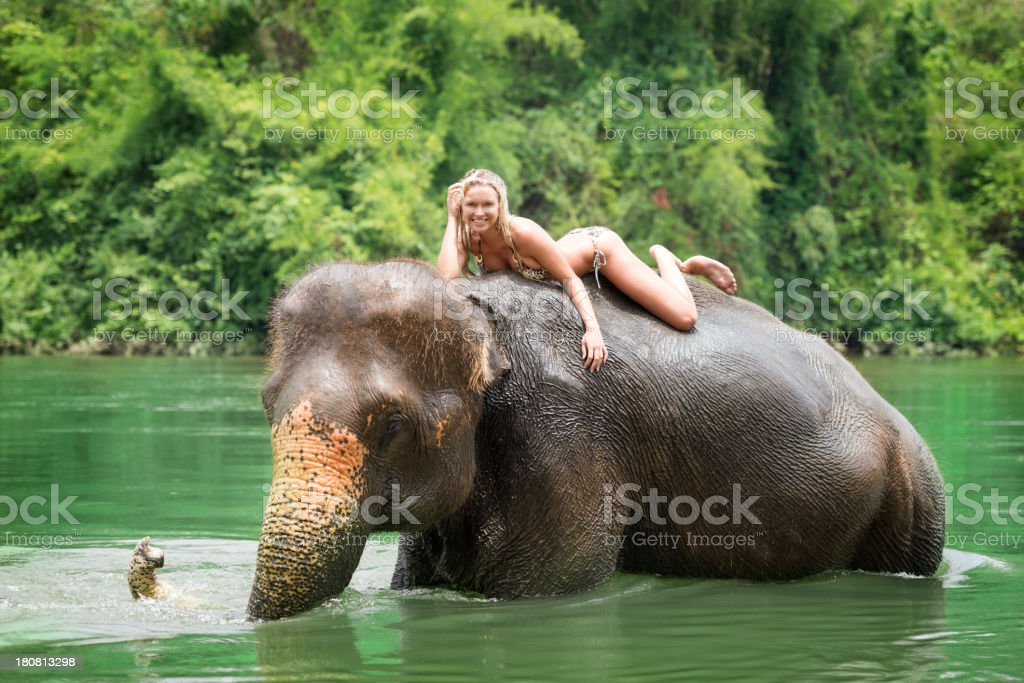 Woman riding on an Elephant, Tropical Rain Forest stock photo