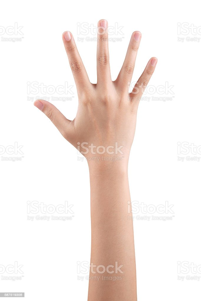 Woman right hand showing the five fingers isolated stock photo