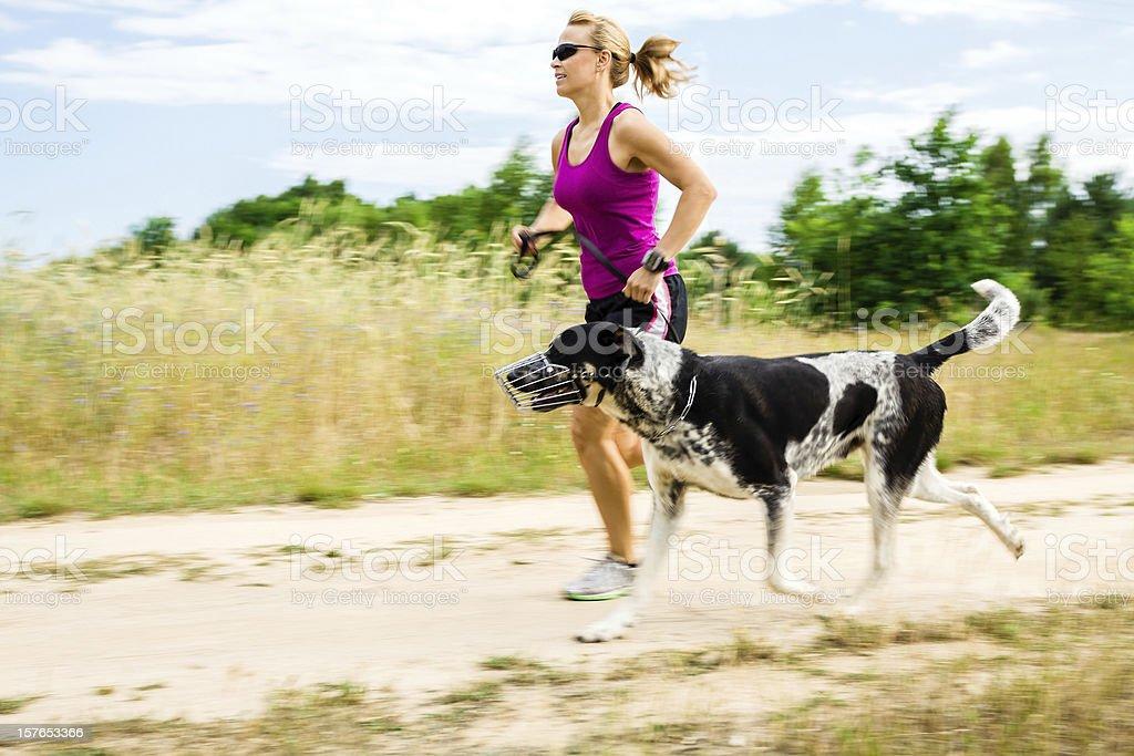 Woman runner running, walking dog in summer nature stock photo