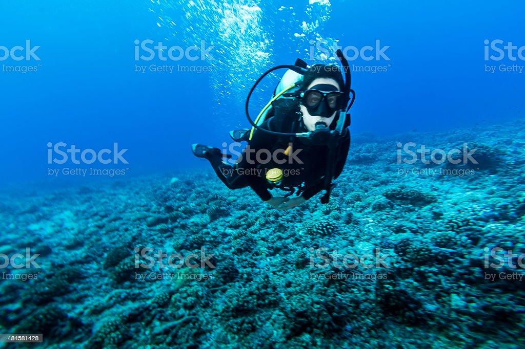 Woman Scuba Diving in Tiputa Pass, Rangiroa, French Polynesia stock photo