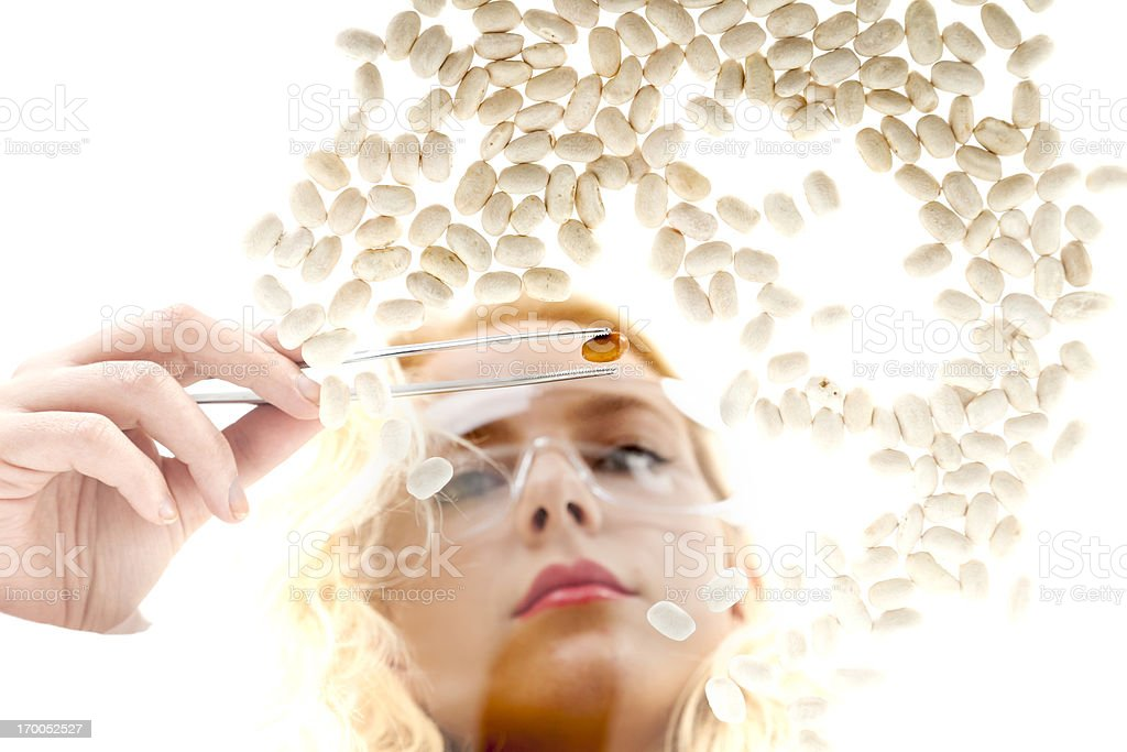 Woman selecting geneticly modified beans with tweezers stock photo