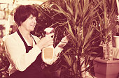 Woman seller tending yucca palm trees