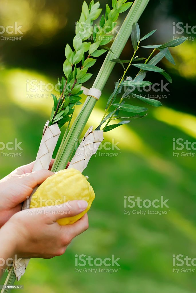 A woman shaking the lulav on a green background stock photo