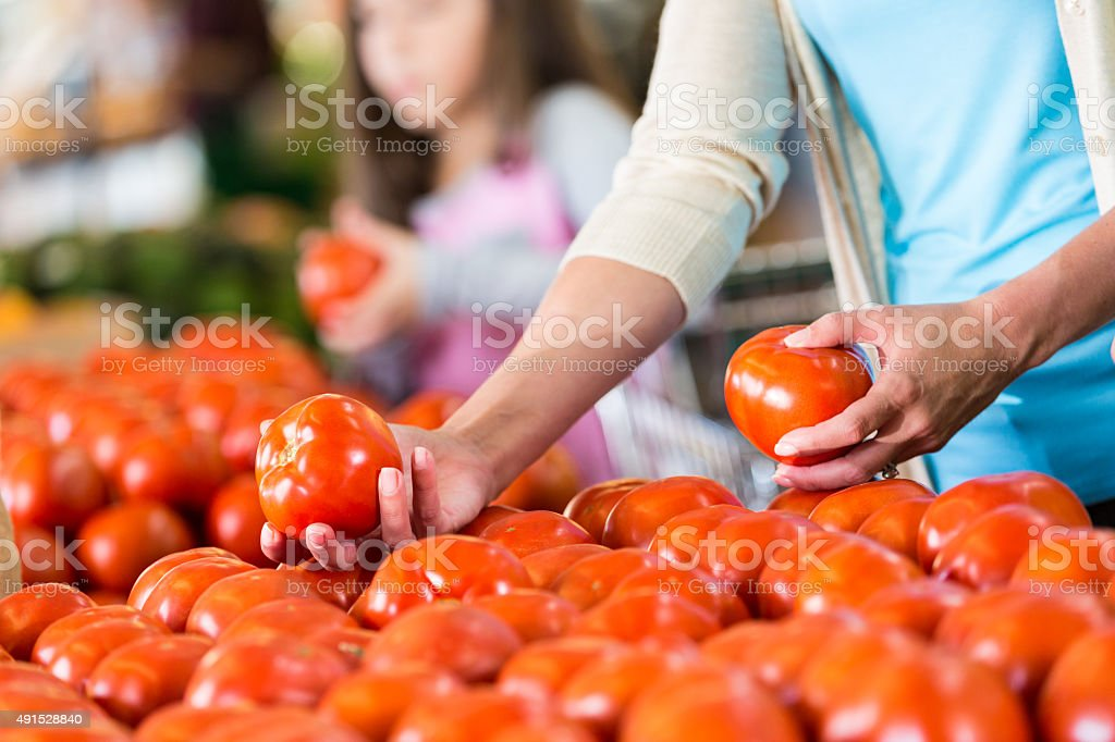 Woman shopping for ripe tomatoes at local market stock photo