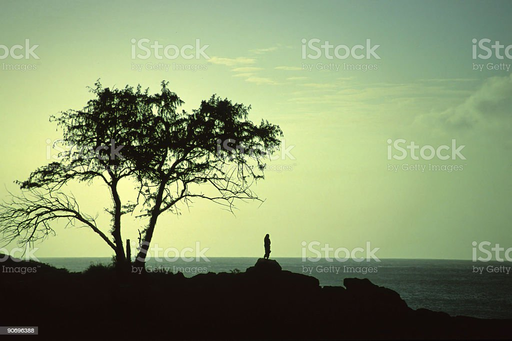 woman silhouette standing on pinnacle and big ocean tree landscape stock photo