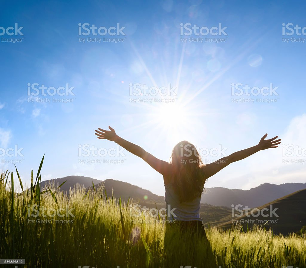 woman silhouette with hands outstretched in wheat field stock photo
