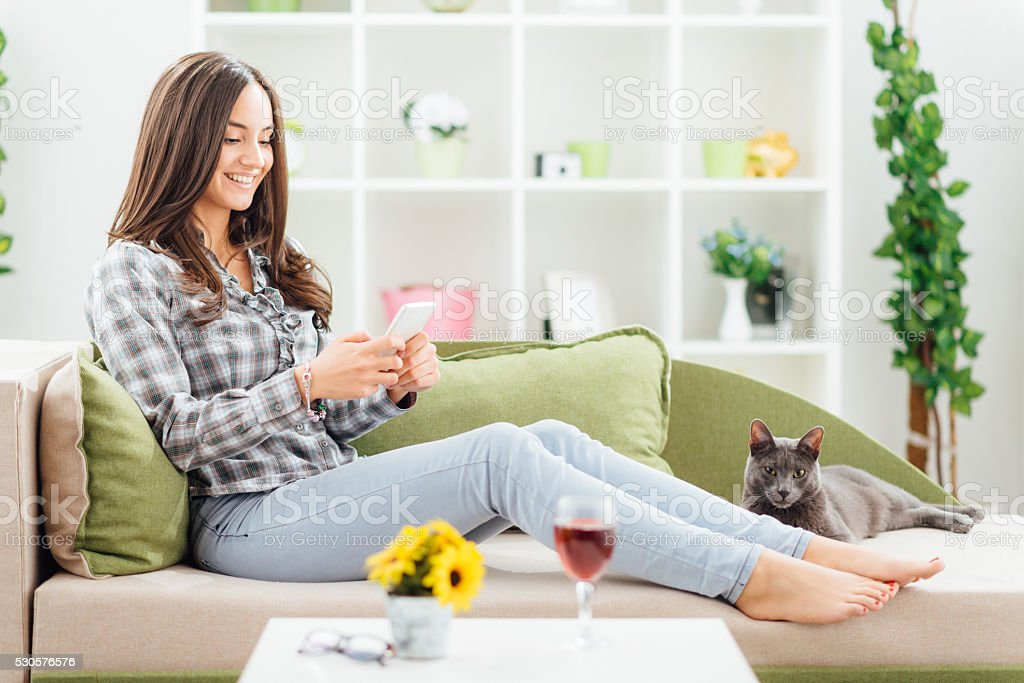 Woman sitting in living room using phone and petting cat stock photo