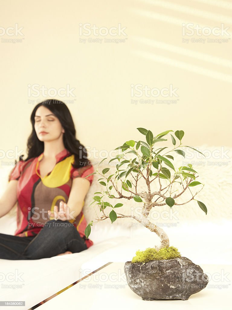 Woman sitting lotus position with bonsai plant in foreground royalty-free stock photo