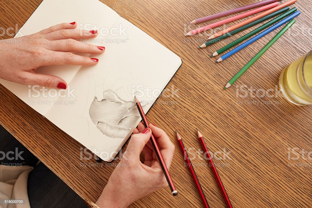 Woman sketching a flower in sketchbook stock photo