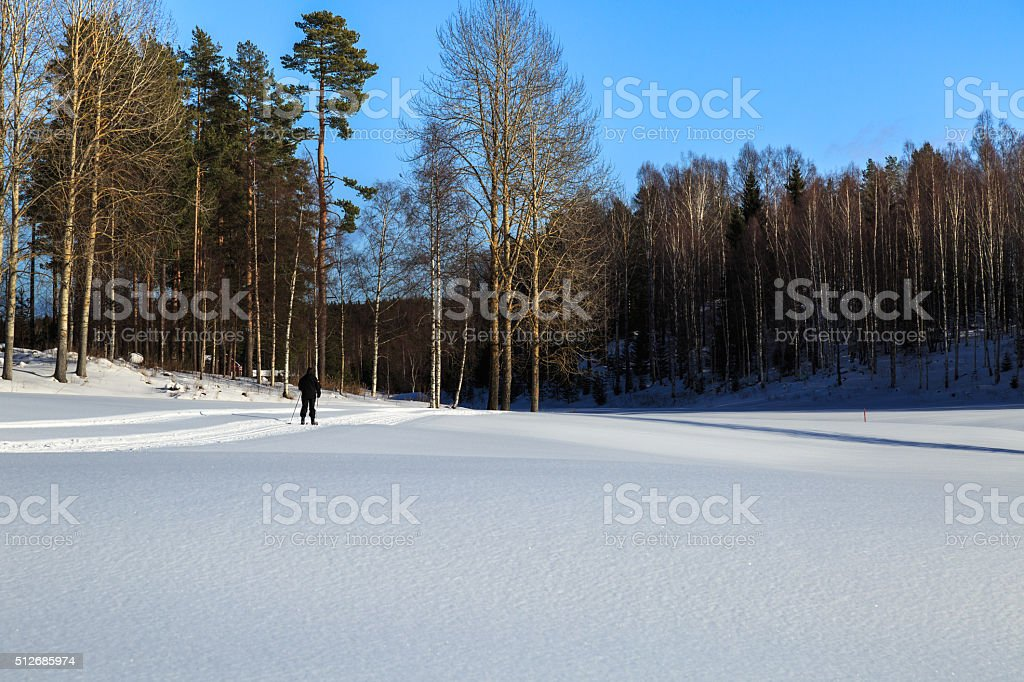 Woman skiing on a field stock photo