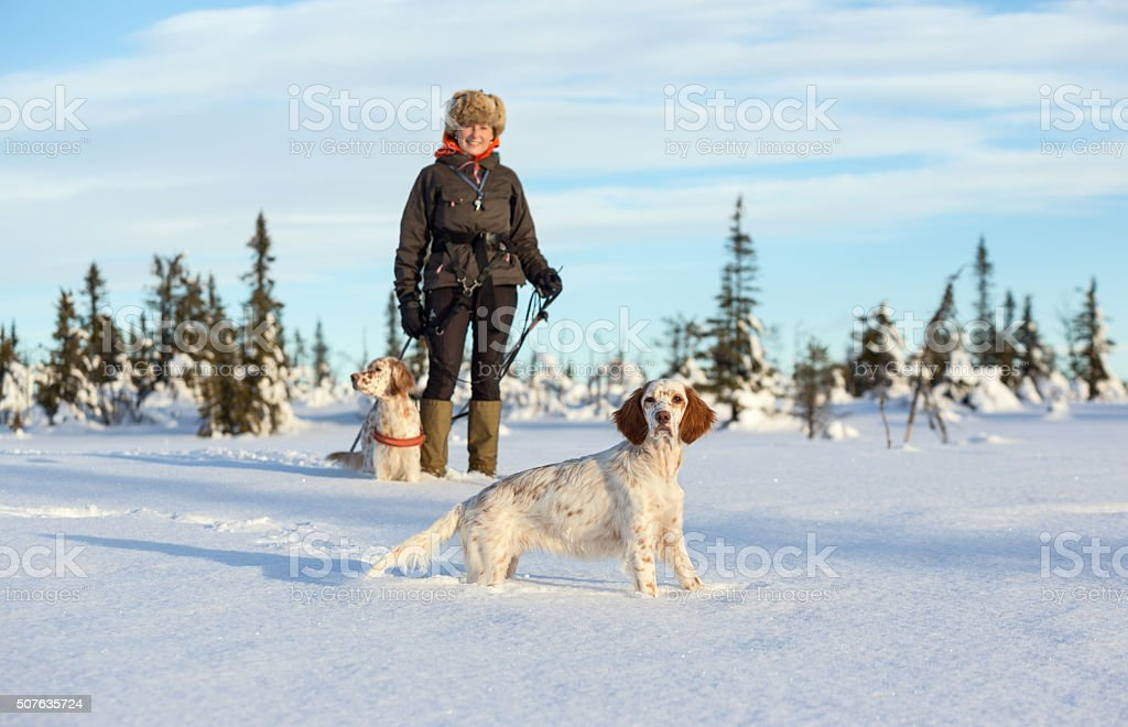 Woman skiing with her dogs, Synnfjell Norway stock photo