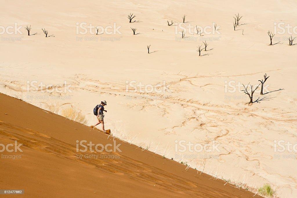 Woman slides down Namib sand dune Sossusvlei trees Namibia stock photo
