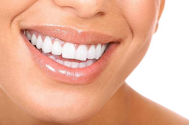 human teeth pictures, images and stock photos - istock, Human Body