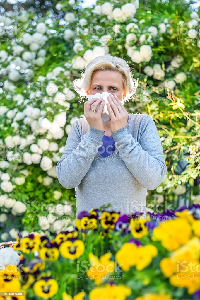 Woman sneezing in the blossoming garden stock photo