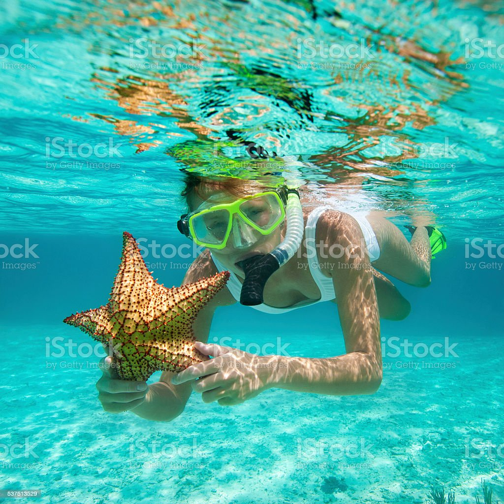 woman snorkeling with a starfish in the Caribbean waters stock photo