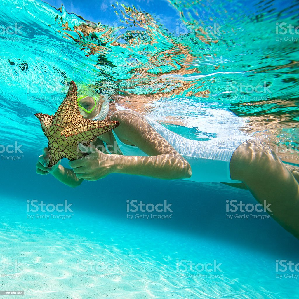 woman snorkeling with an alive starfish in the Caribbean stock photo