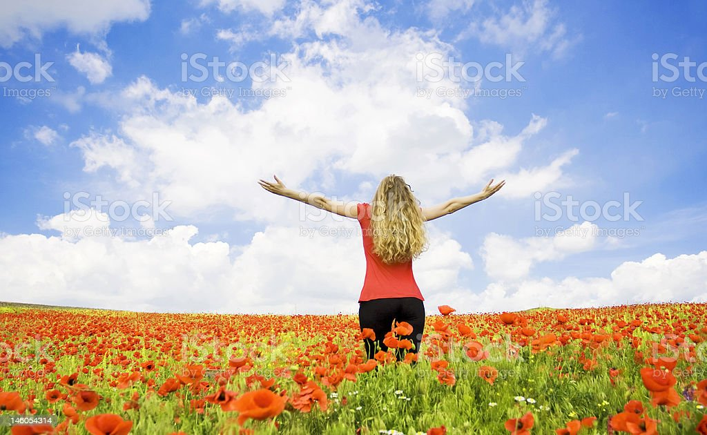 A woman standing in a poppy field royalty-free stock photo