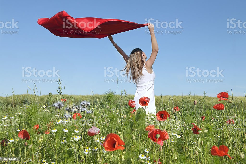 Woman Standing in Poppy Field Holding red scarf to Wind royalty-free stock photo