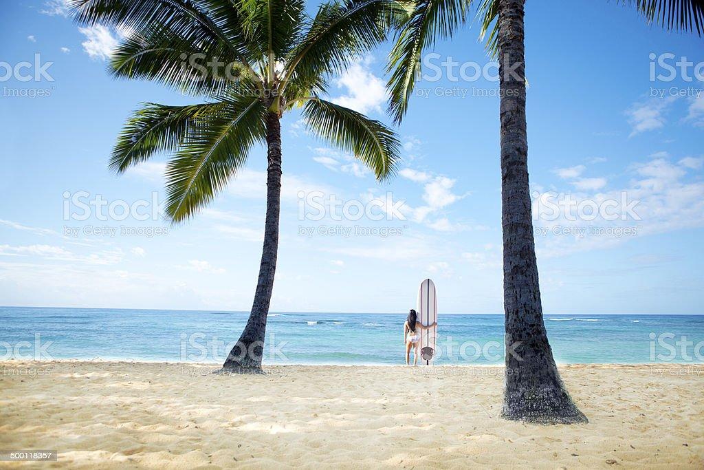 Woman Surfer on Tropical Paradise Beach stock photo