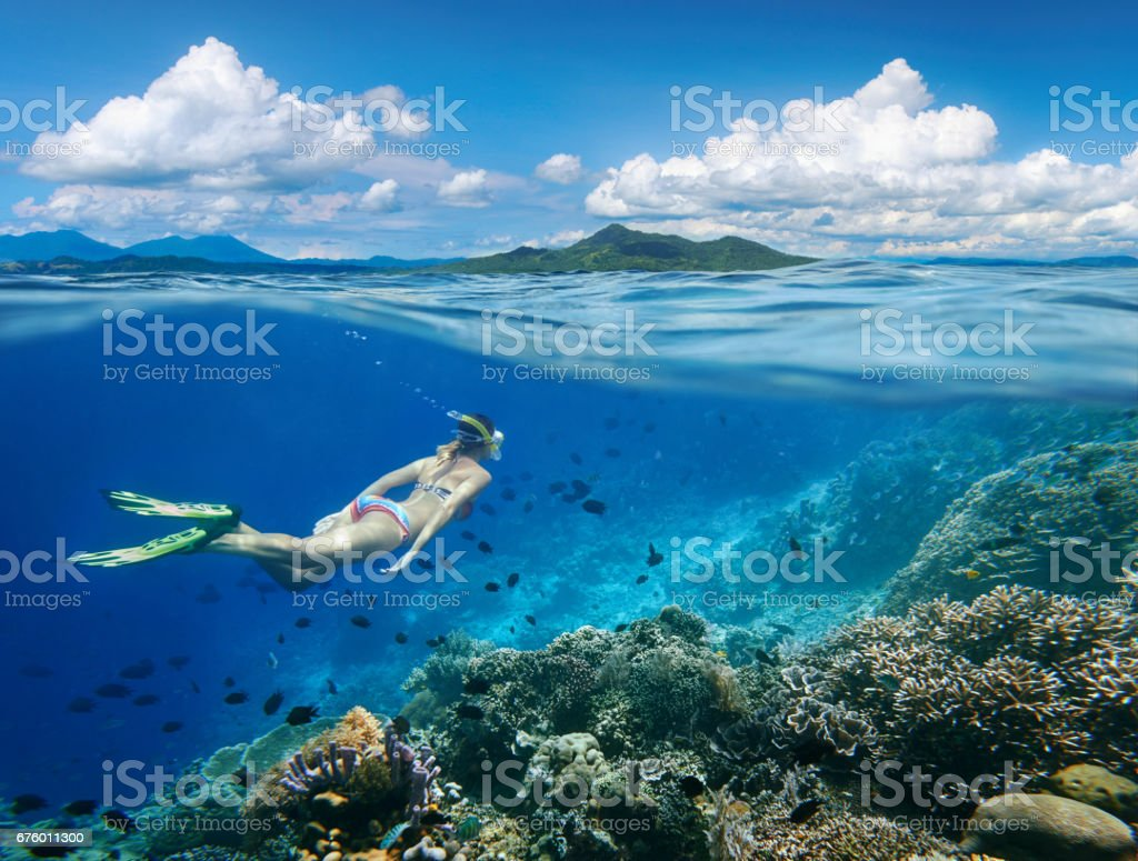 Woman swims around coral reef surrounded by multitude of fish. stock photo