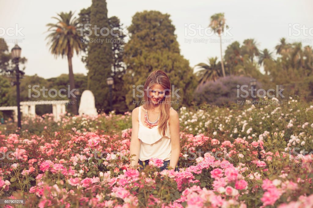 Woman taking care of roses stock photo