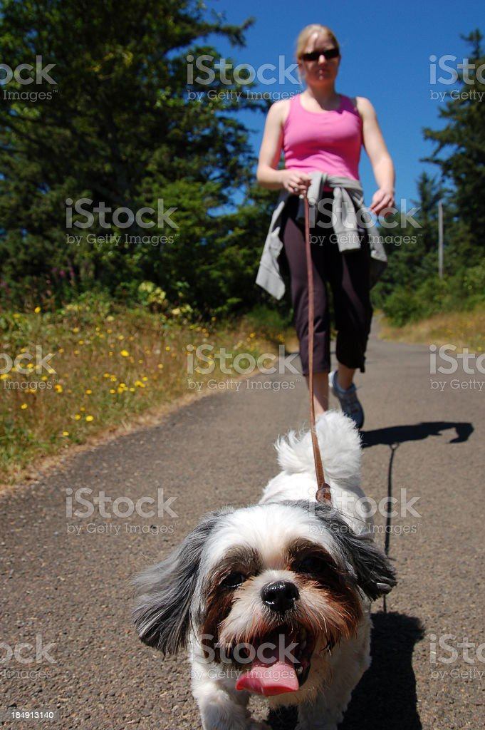 A woman taking her happy dog out for a walk stock photo
