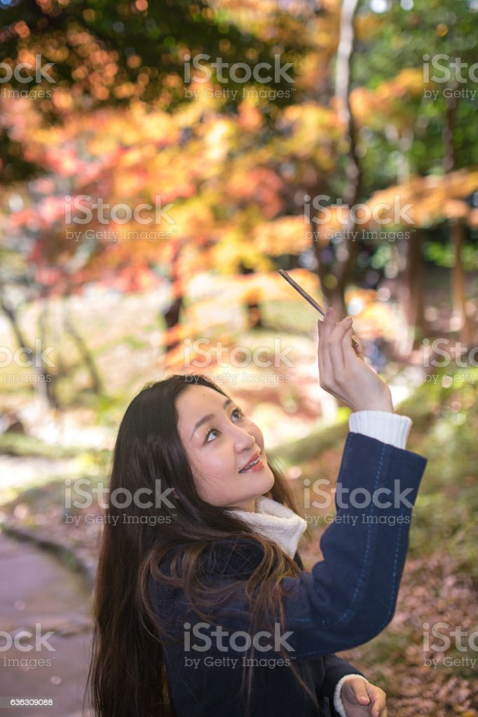 woman taking picture of autumn leaves stock photo