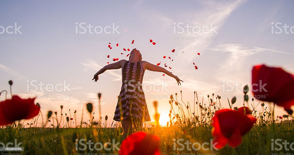 Woman Throwing Petals In The Meadow At Sunset stock photo