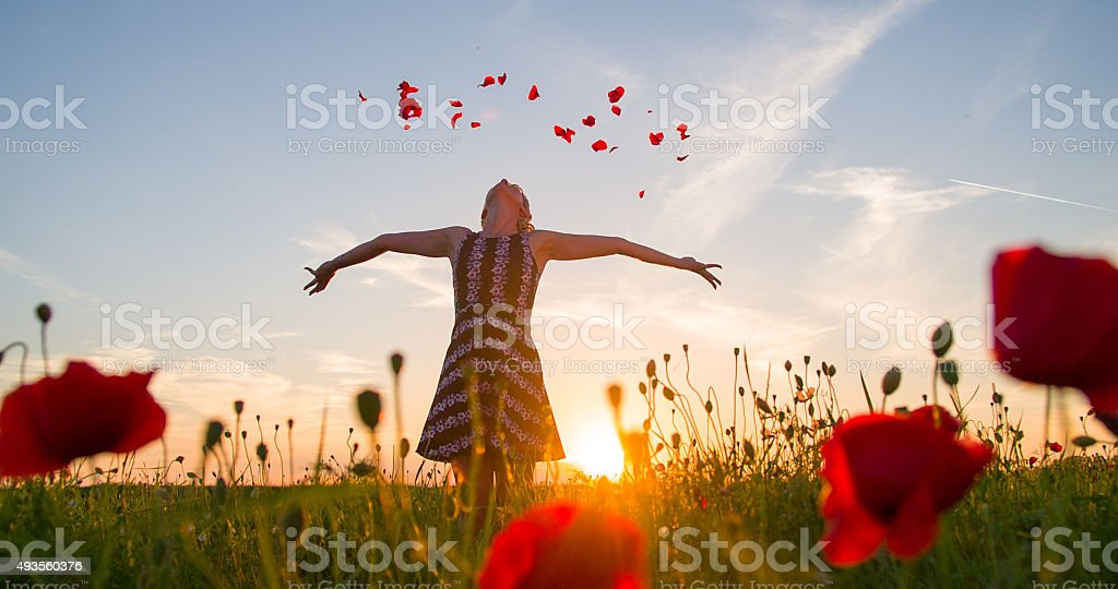 Woman Throwing Petals In The Meadow stock photo