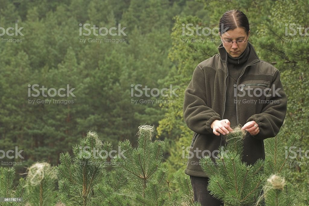 Woman touching some plant in a forest stock photo
