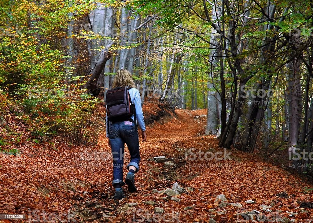 woman tourist walking in the autumn forest royalty-free stock photo