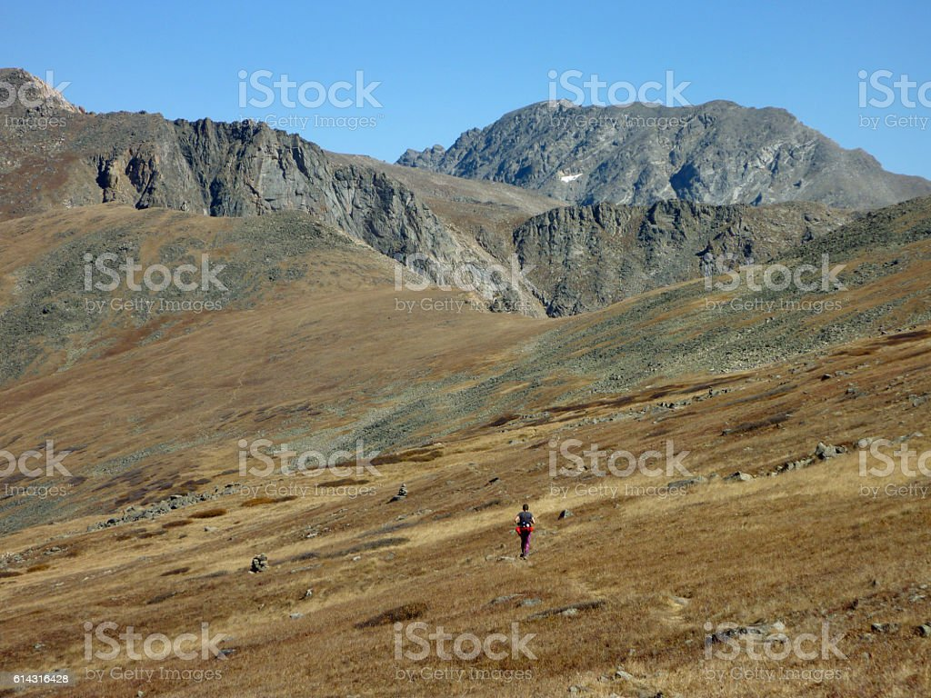 Woman trail runs Continental Divide Arapahoe Peak Colorado Rocky Mountains stock photo
