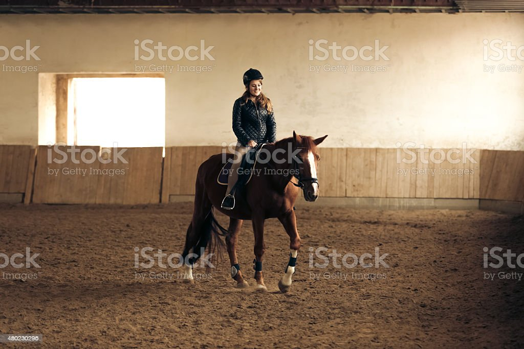 woman training brown horse in riding hall stock photo